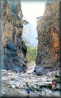Crete: the gorge of Samaria; click to enlarge