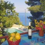 Violetta holidays house in Antipaxi